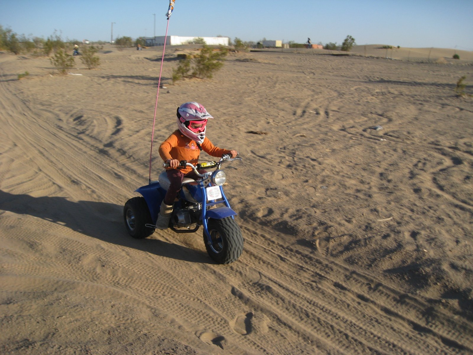 vivi riding atc 70 in pound 2009.jpg